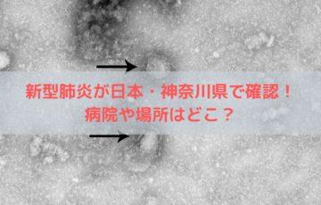 新型肺炎が日本・神奈川県で確認!病院や場所はどこ?