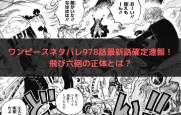 ワンピースネタバレ978話最新話確定速報!飛び六砲の正体とは?