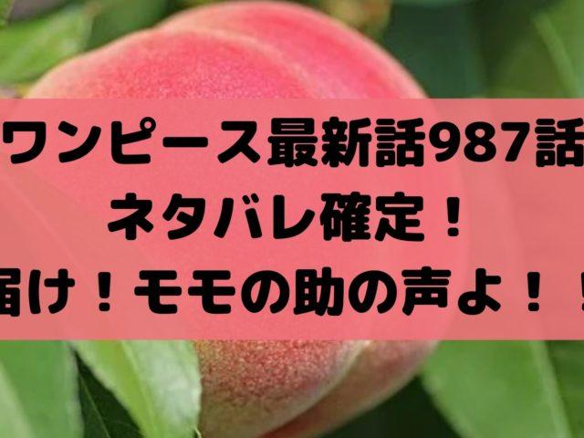 ワンピース最新話987話ネタバレ確定!届け!モモの助の声よ!!